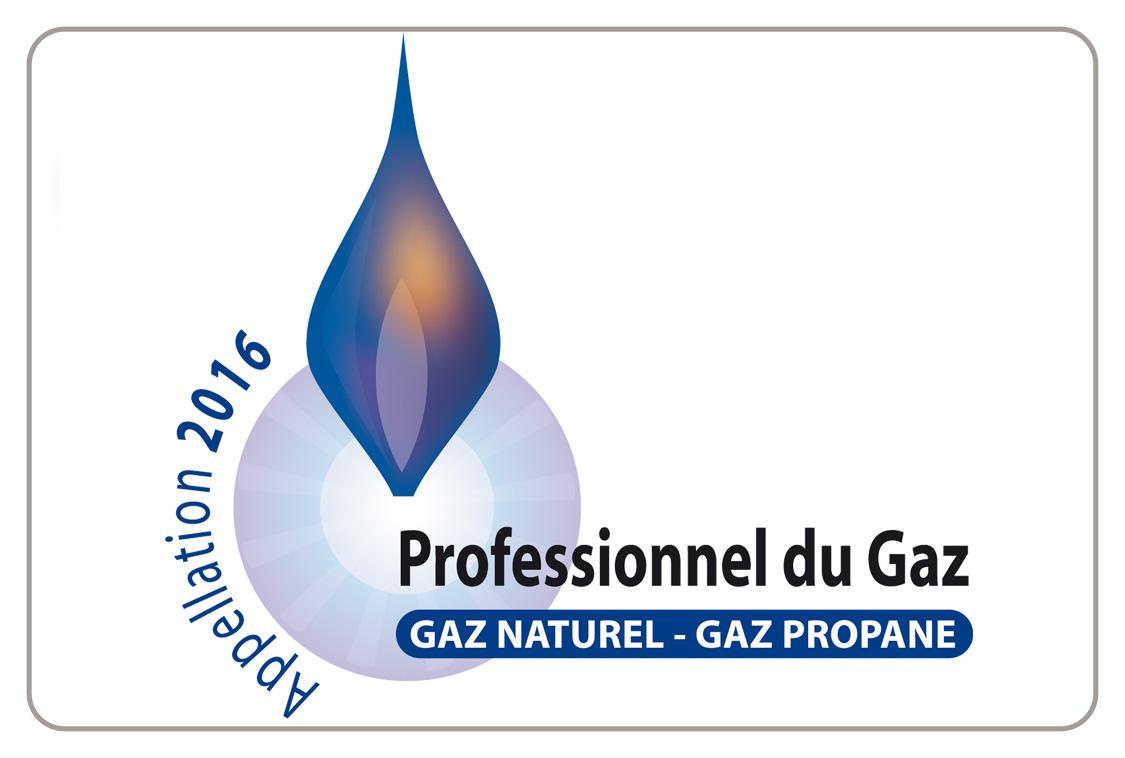 Logo Professionnel du Gaz RGE 2016